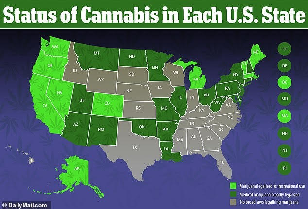 Will Florida be the next state to legalize marijuana? – The